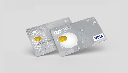 Mastercard  Business и Visa Business